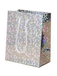 Gift Bag / Silver holographic foil gift bag. 14x11x6.5cm