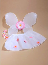 Set / Flower Fairy Set wings/tutu/garland in White only