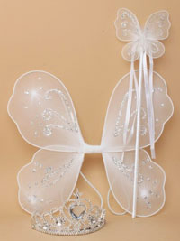 Set / White Net fairy wings / Bfly wand & Tiara